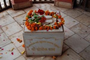 Shri Krishna's sandles