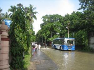 1. Flooding 1 IMG_1190