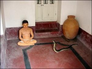 18 Snake Story