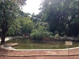 Pampa Lake - AC