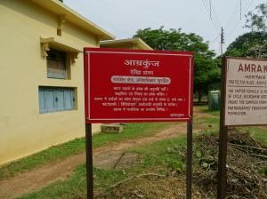 School Girls in Colorful Saris - 5