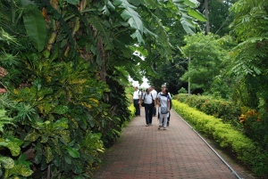 Going to Nilambar's House - 3